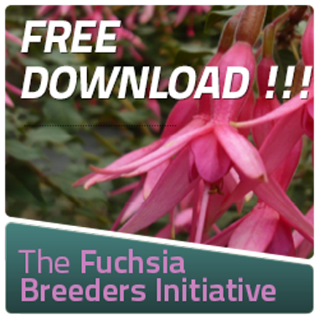The Fuchsia Breeders Initiative