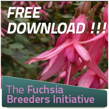 The Fuchsia Breeders Initiative